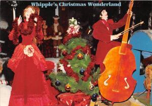 12106 Whipple's Christmas Wonderland, Ballouville, CT