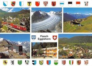 Switzerland Fiesch Kuehboden Eggishorn, Grosser Aletschgletscher Wallis