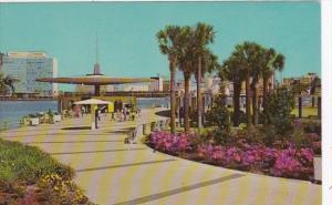 Florida Jacksonville St Johns River Park and Marina