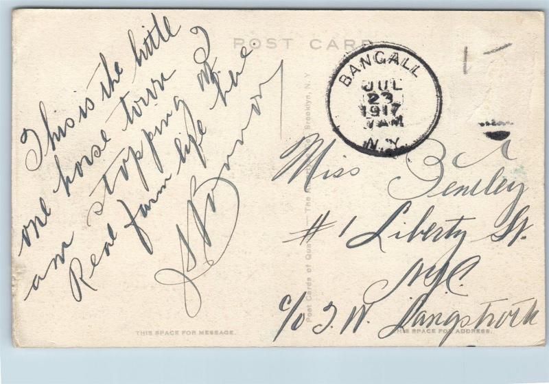 Postcard NY Bangall C&NE Railroad Depot Station View South Handcolored 1917 M10