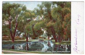 Dalton, Mass, Willows, Willowbrook