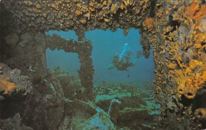 Underwater Treasure Virgin Islands Fish / Sea Mammals Unused