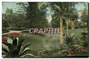 Old Postcard Monte Carlo Gardens