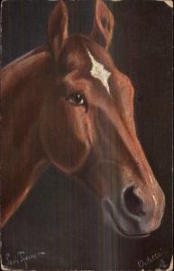 TUCK The Horse Jucker Hungarian Thoroughbred c1910 Postcard