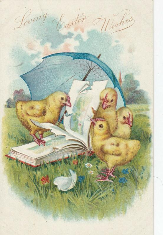 EASTER wishes , Chicks playing with a book, umbrella, 1900-10s; Embossed