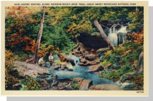 Smoky Mountains Nat'l Park,NC/TN Postcard,Spur Trail,Nr Mnt
