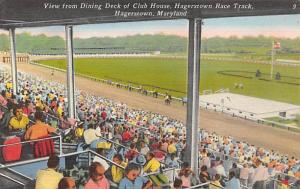 Hagerstown, Maryland Dining Deck of Club House,  Horse Racing Postcard Hagers...