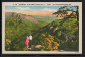 North Carolina colour PC Wiseman's View Linville Gorge unused