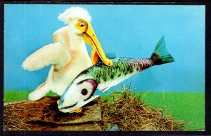 Piccy the Pelican,Steiff Zoo Favorites,Advertising