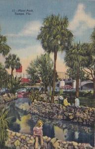 Florida Tampa Scene In Plant Park Curteich