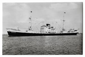 m.s. Liege Ship Boat Nautica REAL PHOTO 01.17