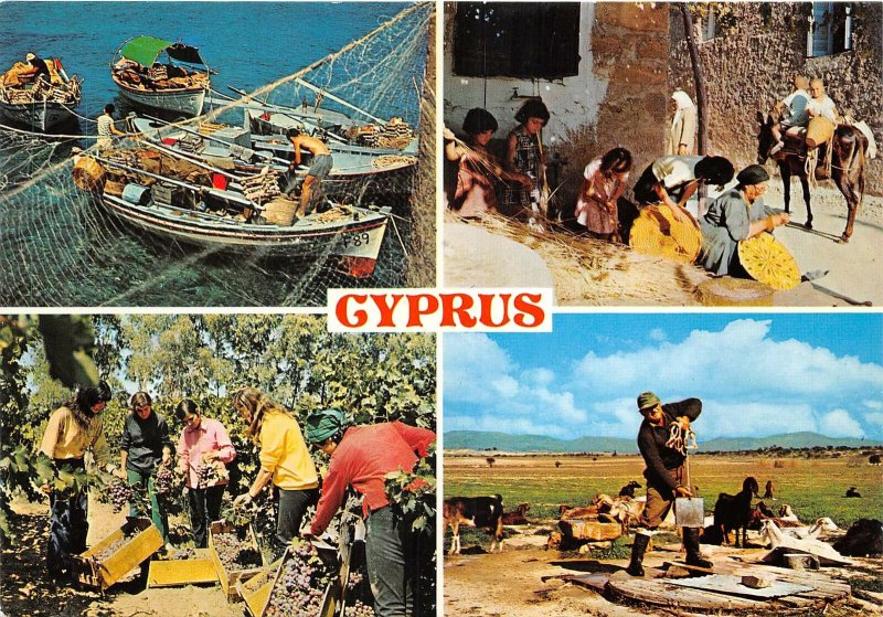 Lot 8 cyprus  types folklore fishing harvesting grapes watered sheep