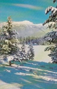 Canada Roche Bon Homme Jasper Alberta