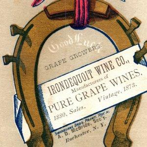1880 Irondequoit Wine Company Vineyards Monroe County Rochester New York