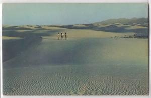 3 Woman Walking on Sand Dunes Desert American Sahara? Tichnor Bros Postcard