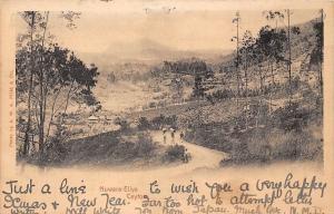 Ceylon Sri Lanka Nuwara Eliya 1900s