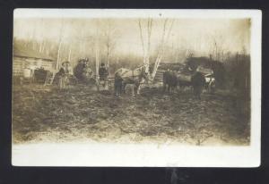 RPPC NORWOOD MINNESOTA HORSE DRAWN FARMING FARM REAL PHOTO POSTCARD
