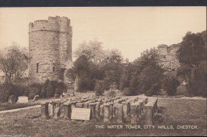 Cheshire Postcard - The Water Tower, City Walls, Chester   A6382