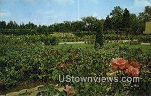 Tulsa Municipal Rose Garden - Oklahoma
