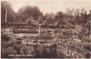 IPSWICH , England , 1900-10s ; Lower Arboretum