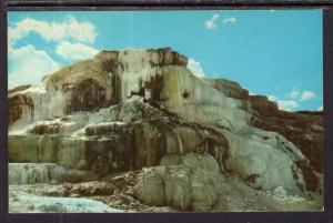 Minerva Terrace at Mammoth,Yellowstone National Park BIN