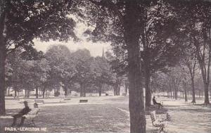 Maine Lewiston The Park