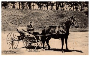 Massachusetts  Stockbridge , Tom Carey in horse drawn cart