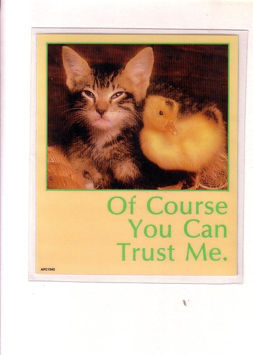 Peel Off Postcard Coaster, Kitten with Baby Chick, 'Of Course You Can Trust Me