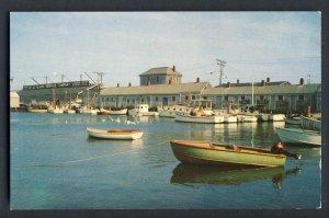 Nantucket, Massachusetts/MA Postcard, Scallop Fleet At Dock, Cape Cod