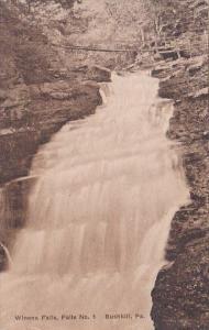 Winona Falls No 1 Bushkill Pennsylvania Albertype