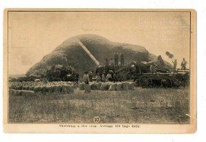 Texas Advertising Postcard Thrashing Rice Gulf Coast Land & Investment Co #75258