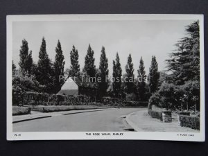 Croydon South London PURLEY The Rose Walk c1956 RP Postcard by Raphael Tuck PL21