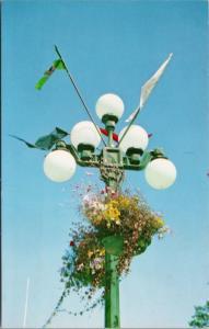 Victoria BC Lamp Standard & Flower Baskets Unused Vintage Postcard D67