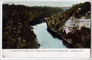 Genesse River Gorge, Rochester NY