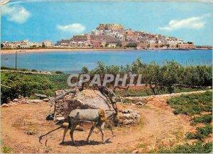 Postcard Modern Peniscola No 113 is the waterwheel vista general Donkey Donkey