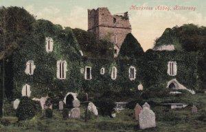 KILLARNEY, Kerry, Ireland, PU-1911; Muckross Abbey