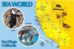 Sea World - San Diego, California