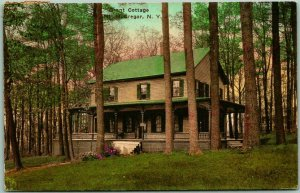 1929 Mount McGregor, New York Postcard Grant Cottage Hand-Colored - Albertype