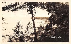 Ludington Michigan~Hamlin Lake Through Birch Trees~Postcard RPPC 1926