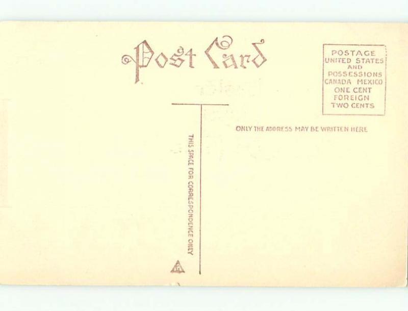 Unused Divided-Back easter BUNNY RABBIT & CHICKS & FLOWERS r2900