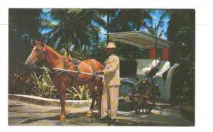 Man with horse and cart,Nassau, Bahamas, 40-60s