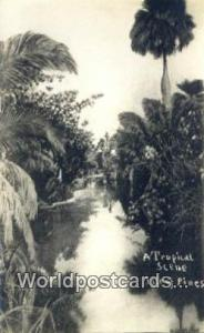 Isle of Pines Republic of Cuba Tropical  Tropical