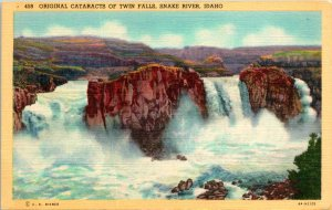 Snake River ID Twin Falls Cataracts Postcard used (16711)