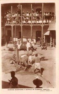 Lot142 real photo gurkhas sacrificing a buffalo on dusserah festival nepal types
