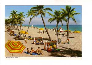People on Hollywood Beach in Florida, 60,s Hair and Bathing Suits, Photo E Lu...