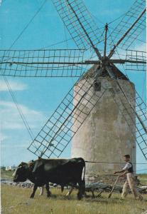 Post Card Spain Baleares Formentera Mola Mill