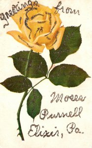 Pennsylvania Greetings From Moses Purnell Elixir With Flowers