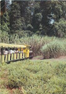 Tourist train sunshine plantation Nambour Queensland Australia postcard