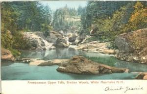 Ammonoosuc Upper Falls, Bretton Woods, White Mountains N....