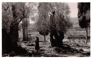 Garden of Gethsemane Jordan Unused